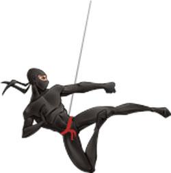 footer-ninja